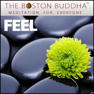 TBB_feel